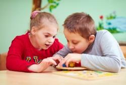 Организация обучения, коррекция нарушений развития и социальная адаптация лиц с