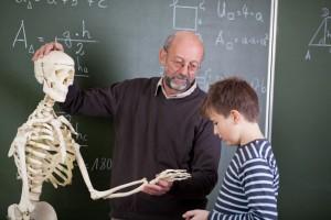 Учитель биологии: теория и практика педагогического процесса