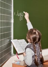 Учитель русского (родного) языка: теория и практика предметного и